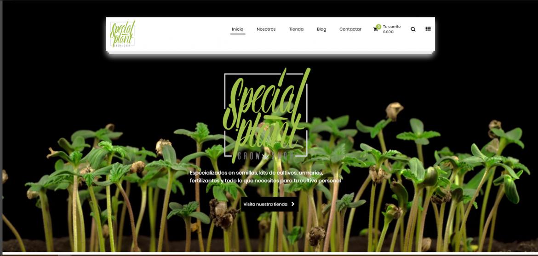 Special Plant Web